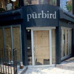 """Purbird via <a href=""""http://blogs.villagevoice.com/forkintheroad/2011/06/purbird.php"""" rel=""""nofollow"""">FitR</a>"""