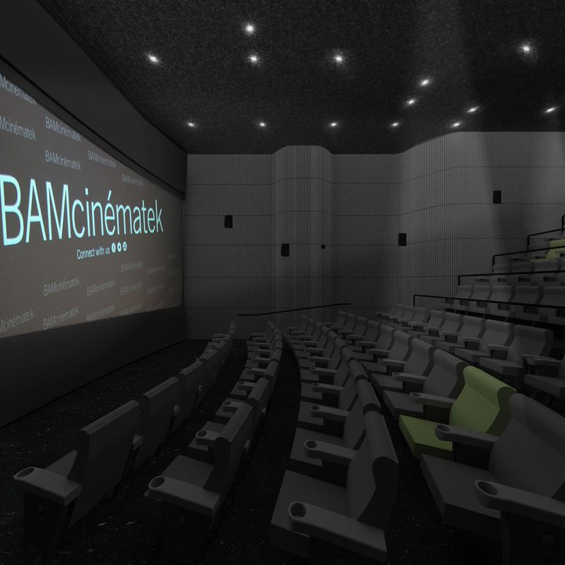 "A movie theatre with a screen that reads ""BAMcinematek."""