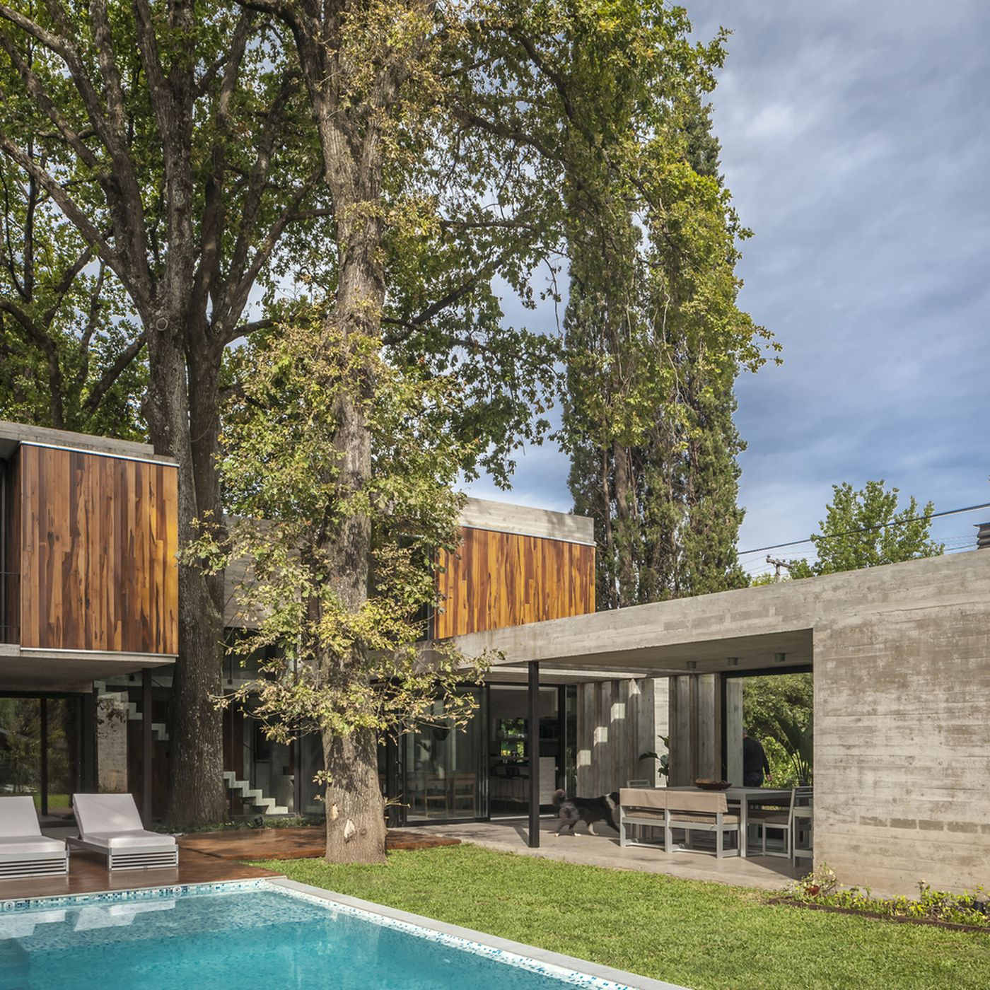 Modern Concrete And Wood House Was