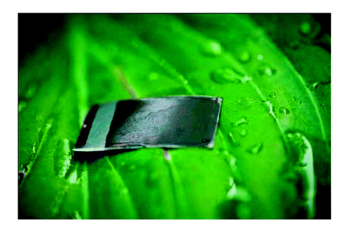 Cheaper  U0026 39 Artificial Leaf U0026 39  Mimics Photosynthesis For More