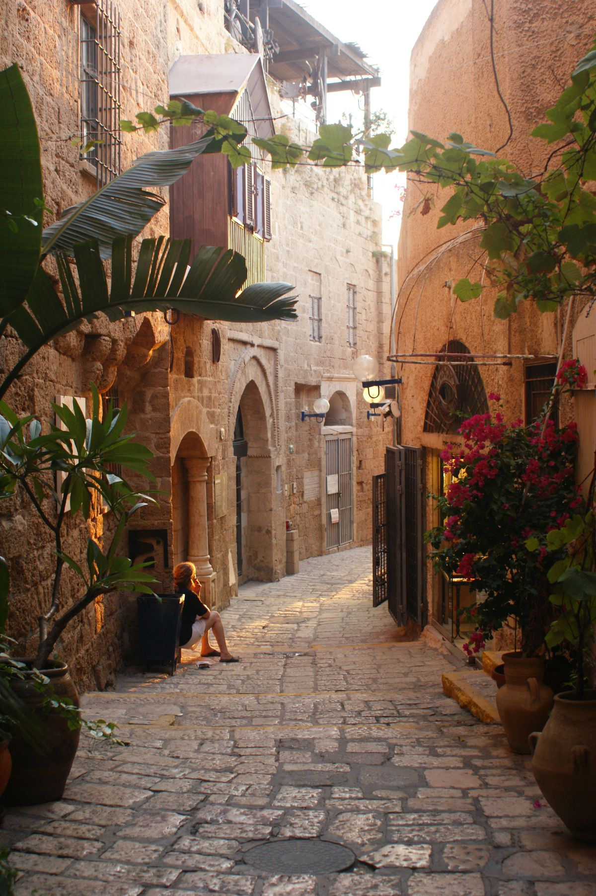 A street in Tel Aviv. The ground is cobblestone, the buildings are stone and there are multiple plants lining the street. A person leans against one of the walls.