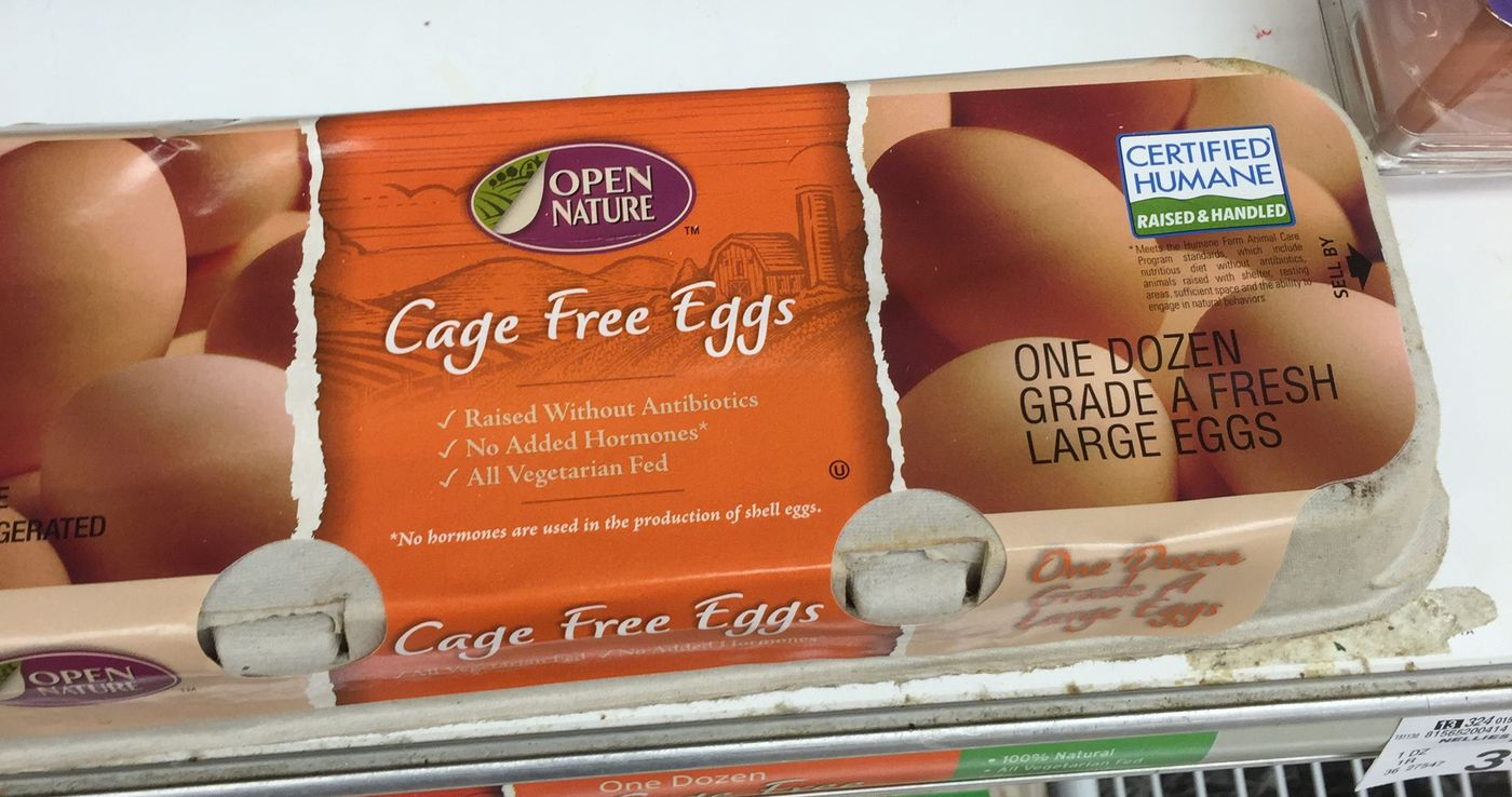 Cage-free, free range, organic eggs: what all those labels