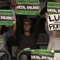 """Environmentalists hold up protest signs that read in Portuguese """"Veto Dilma"""" and """"Mourning for the Forest"""" during a session by Chamber of Deputies who are expected to vote on a new forest law in Brasilia, Brazil, Wednesday, April 25, 2012.  Environmentalists say that any changes made to Brazil's benchmark environmental laws will damage the Amazon and other areas."""