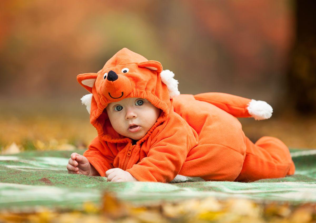Cute baby in a fox costume