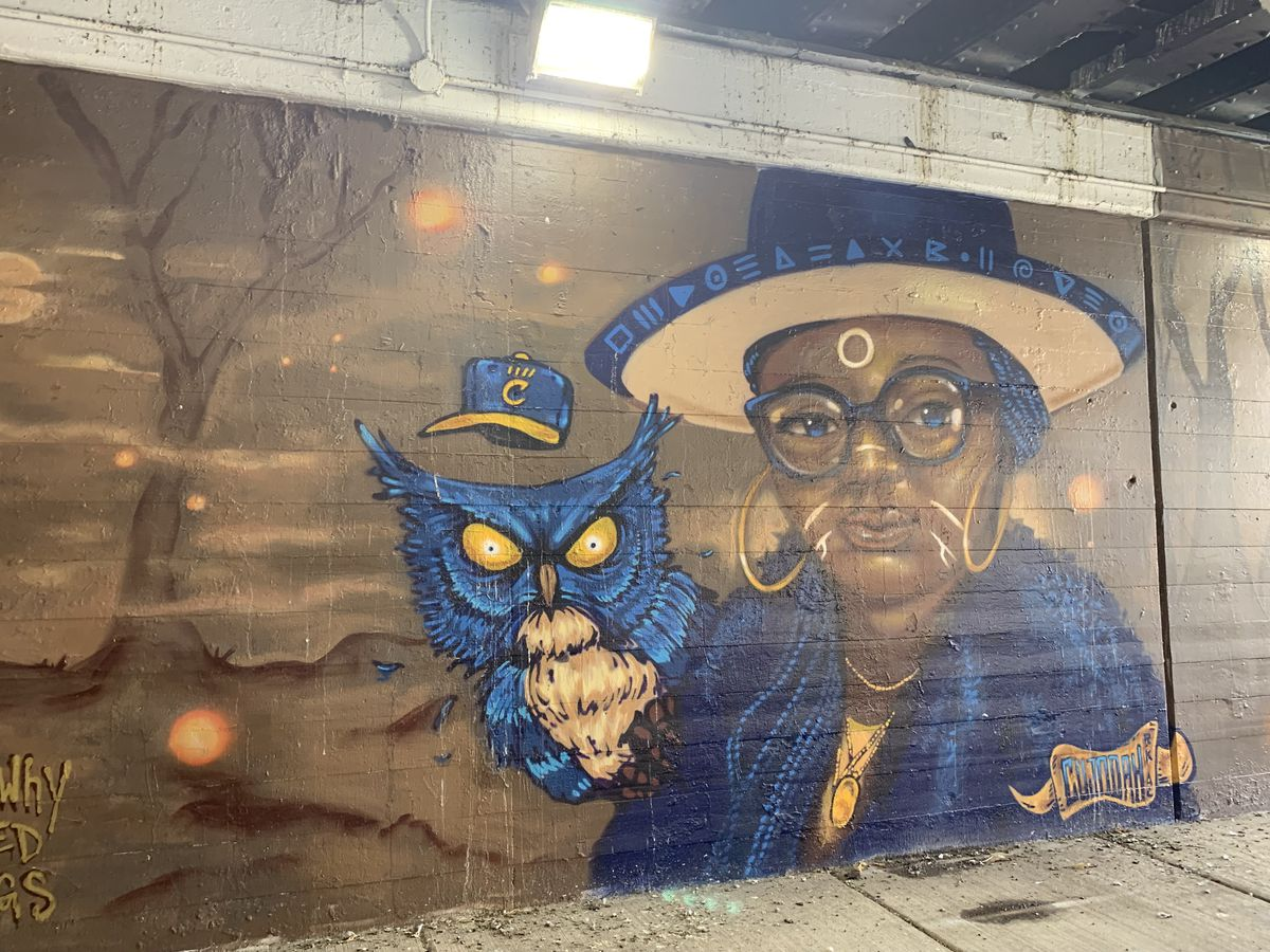 """Bronzeville artist Joe Nelson, who goes by Cujo and grew up in Englewood, says the image is of one of his cousins. """"This particular piece was a tribute to not just that one cousin but all cousins, that I love them and am thinking about them,"""" he says. """"As a family, we've been going through a lot, I lost two uncles this year. I lost friends, too. It's been hard."""" The owl """"represents all of our combined wisdoms, the wisdoms passed down."""""""