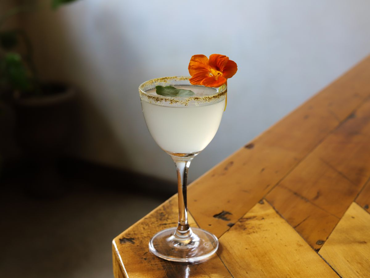 A pale yellow martini, garnished with a bold red flower and a dehydrated sauerkraut rim, sits on the edge of a wooden bar