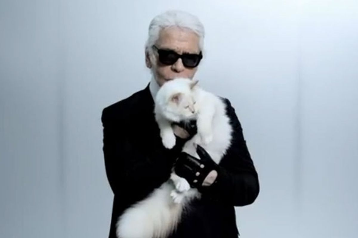 11 Karl Lagerfeld Quotes As Narrated By Choupette Racked