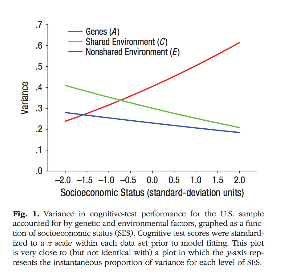 Iq And Fade Out Effect Environmental >> There S Still No Good Reason To Believe Black White Iq Differences