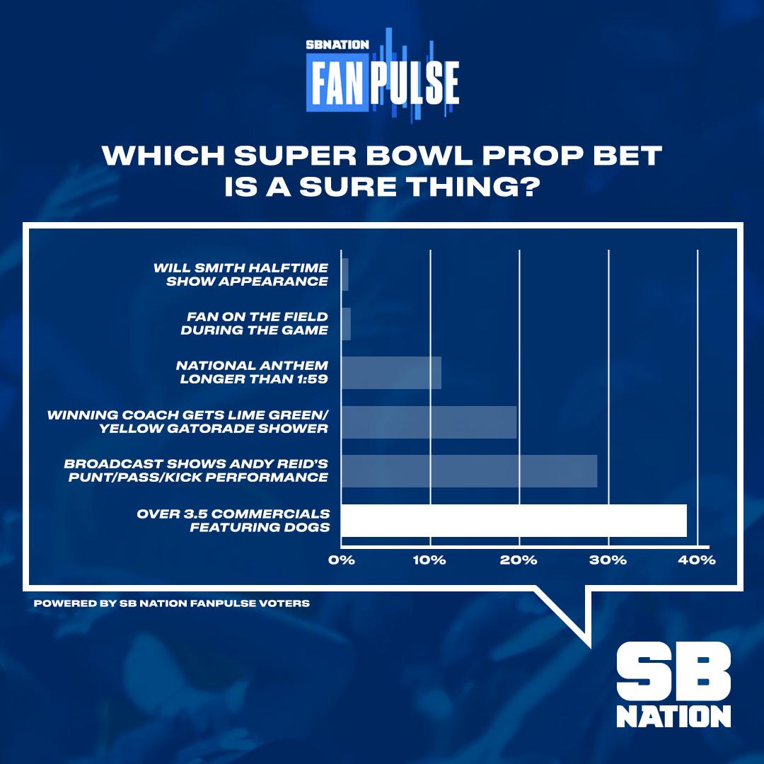 Who should i bet on for the super bowl galatasaray vs bursaspor bettingexpert football