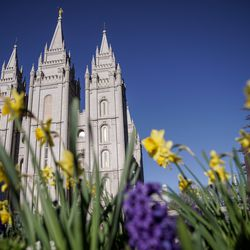 The Salt Lake Temple of The Church of Jesus Christ of Latter-day Saints is seen in the morning light before the start of the 190th Annual General Conference in Salt Lake City on Saturday, April 4, 2020. Due to the spread of COVID-19, the conference is being broadcast without church members in attendance.