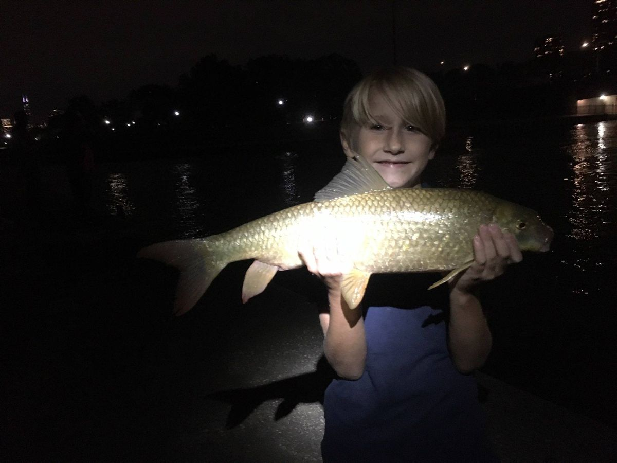 Jack Caunter, 7, holds a shorthead redhorse he caught and released at Diversey Harbor. Provided photo