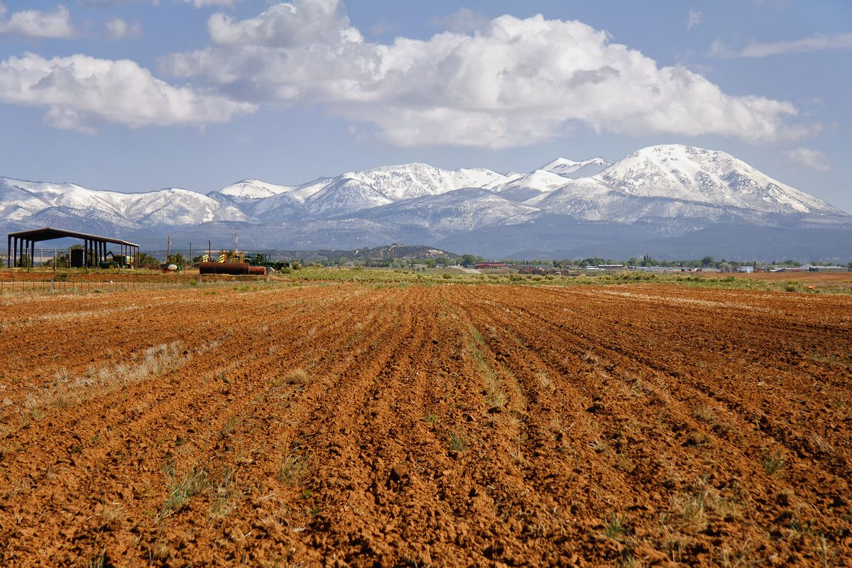 Last year was Utah's driest on record. As commissioner of the Utah Department of Agriculture and Food, I should be filled with doom and gloom.
