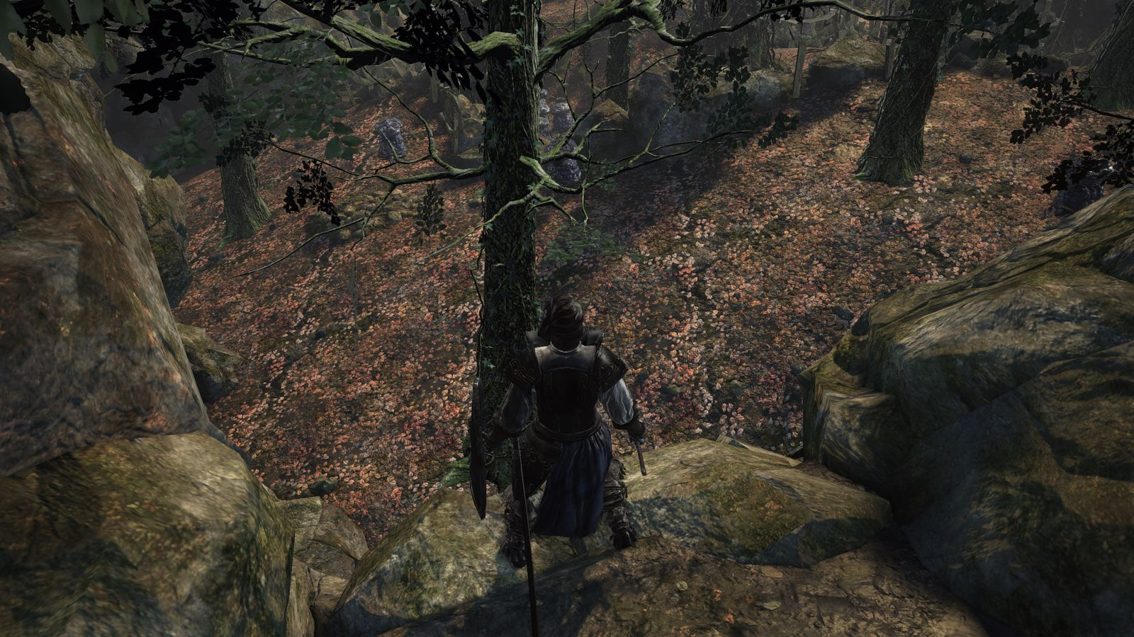 Dark Souls Ii Out Stunning Wallpapers High Quality: Dark Souls 3: Road Of Sacrifices Walkthrough