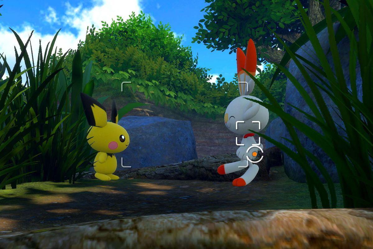 Scorbunny and Pichu in Pokémon Snap.