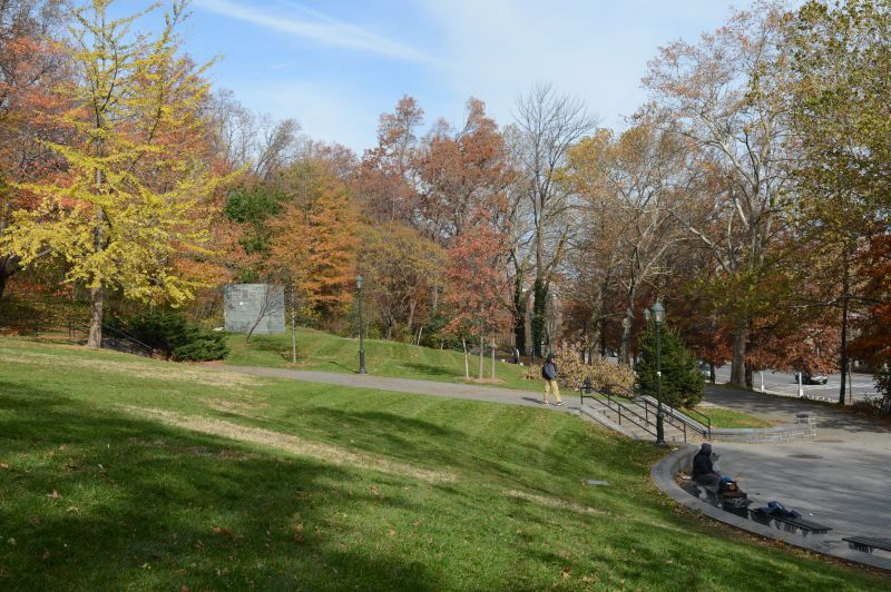 A park. In the foreground is green grass. In the distance are trees with multicolored leaves.