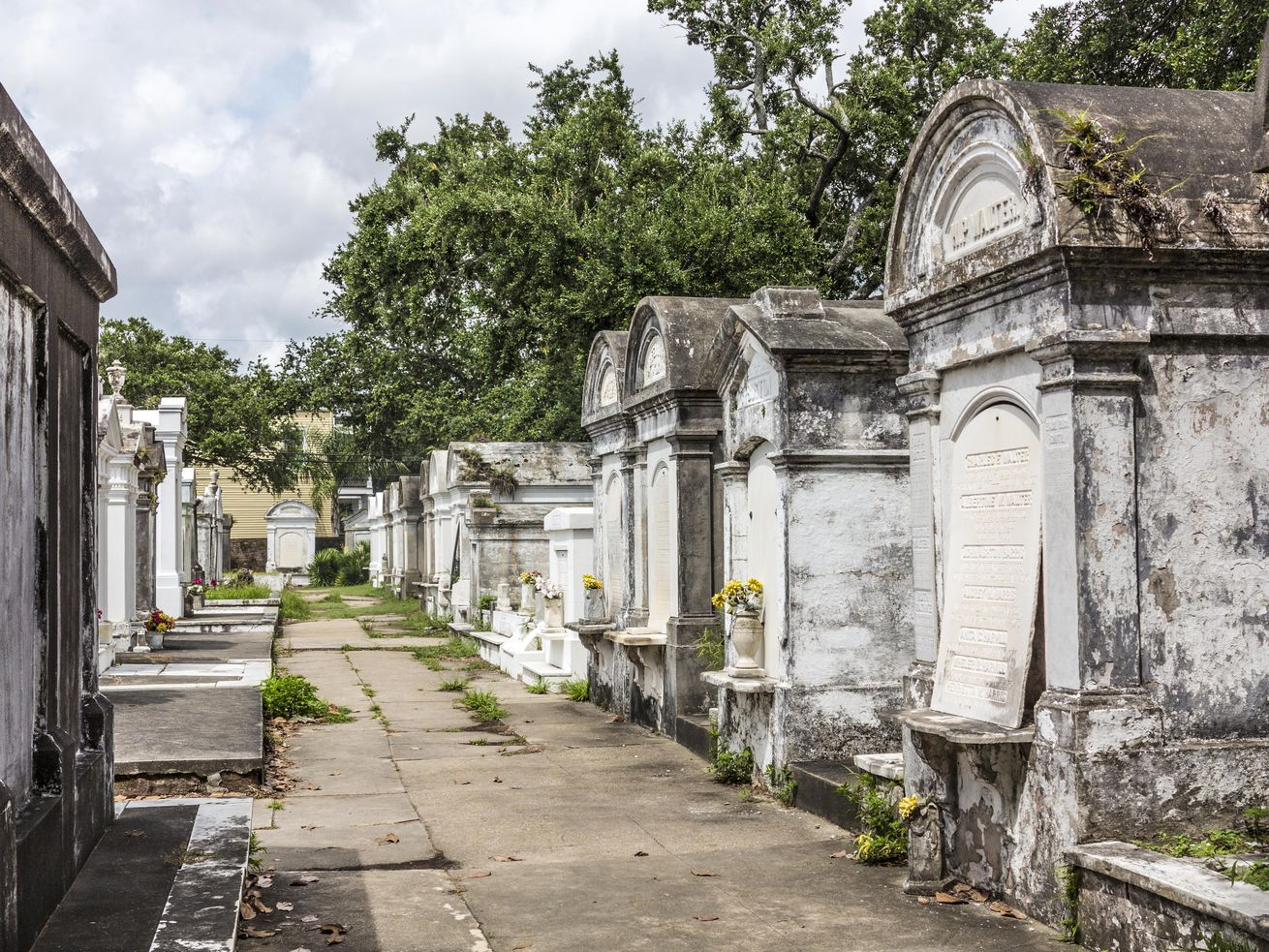 A New Orleans cemetery with above ground graves. The graves are decayed small buildings with arched roofs.