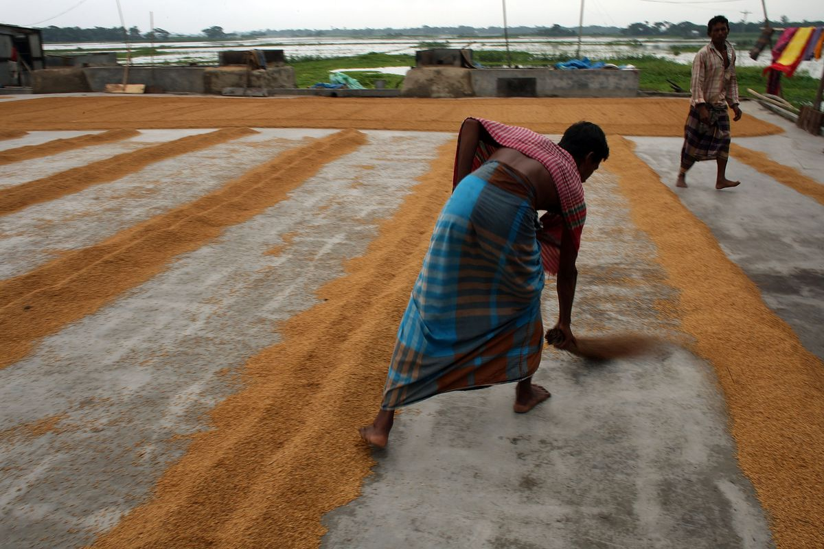 TPP won't do anything for this Bangladeshi farmer — and currently US policy is holding her back.