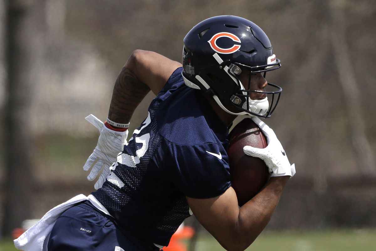 Could Bears rookie RB David Montgomery be the next Matt Forte?