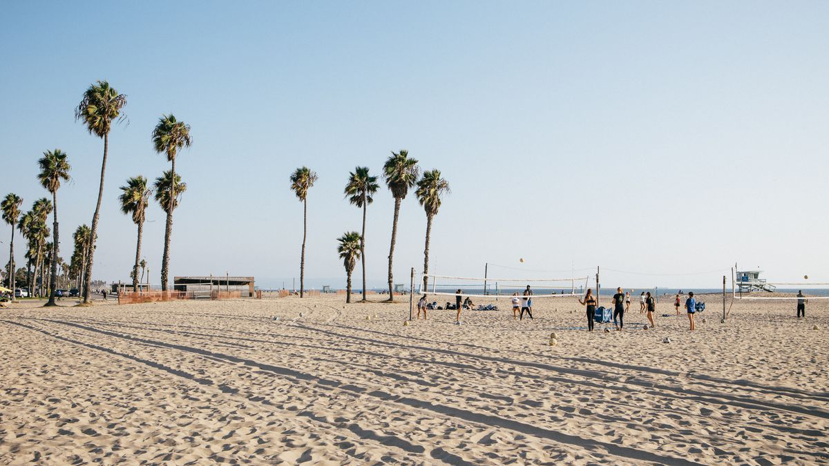 A vast beach, with bright blue skies, tall palm trees and people playing beach volleyball.