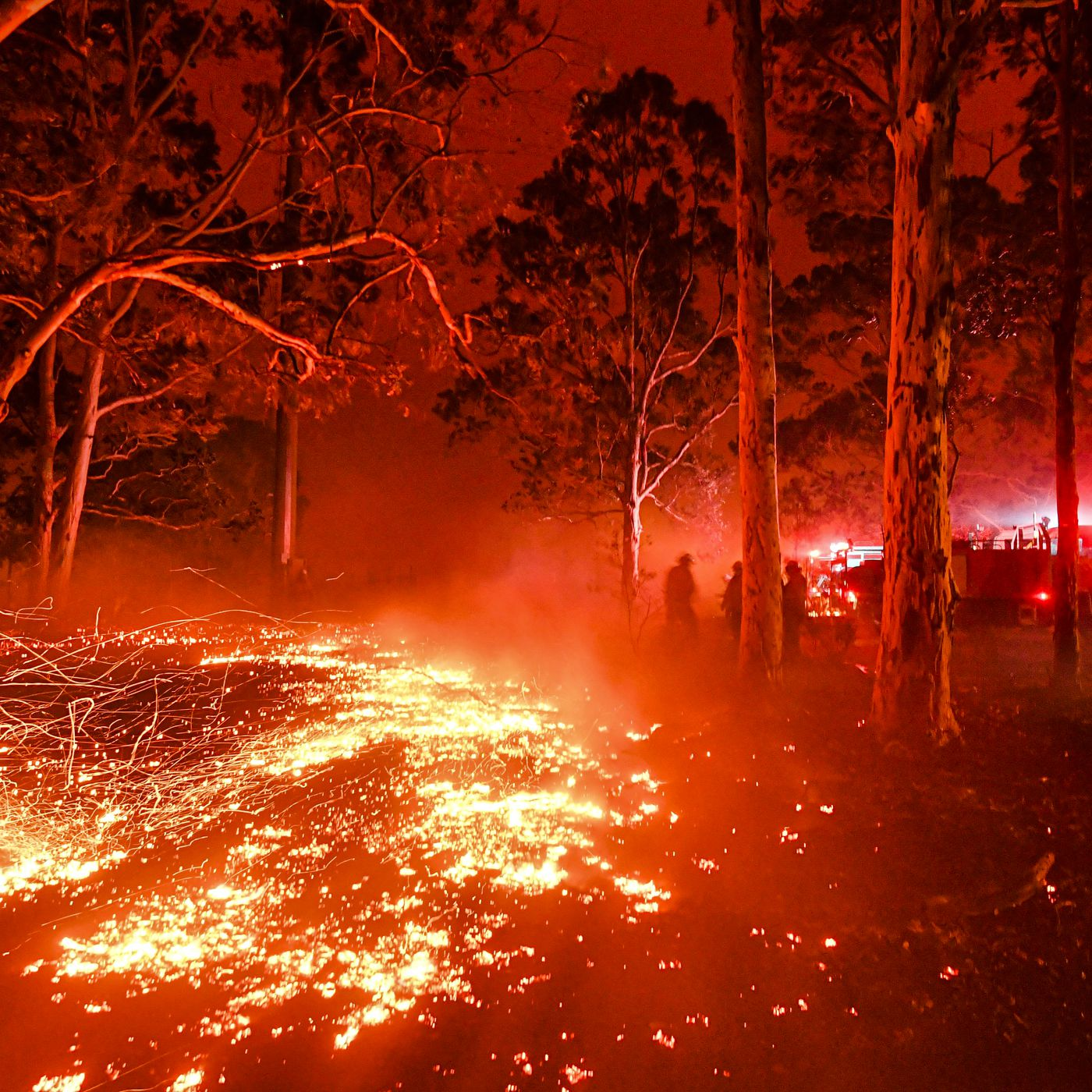 Australia Fires The Government Is