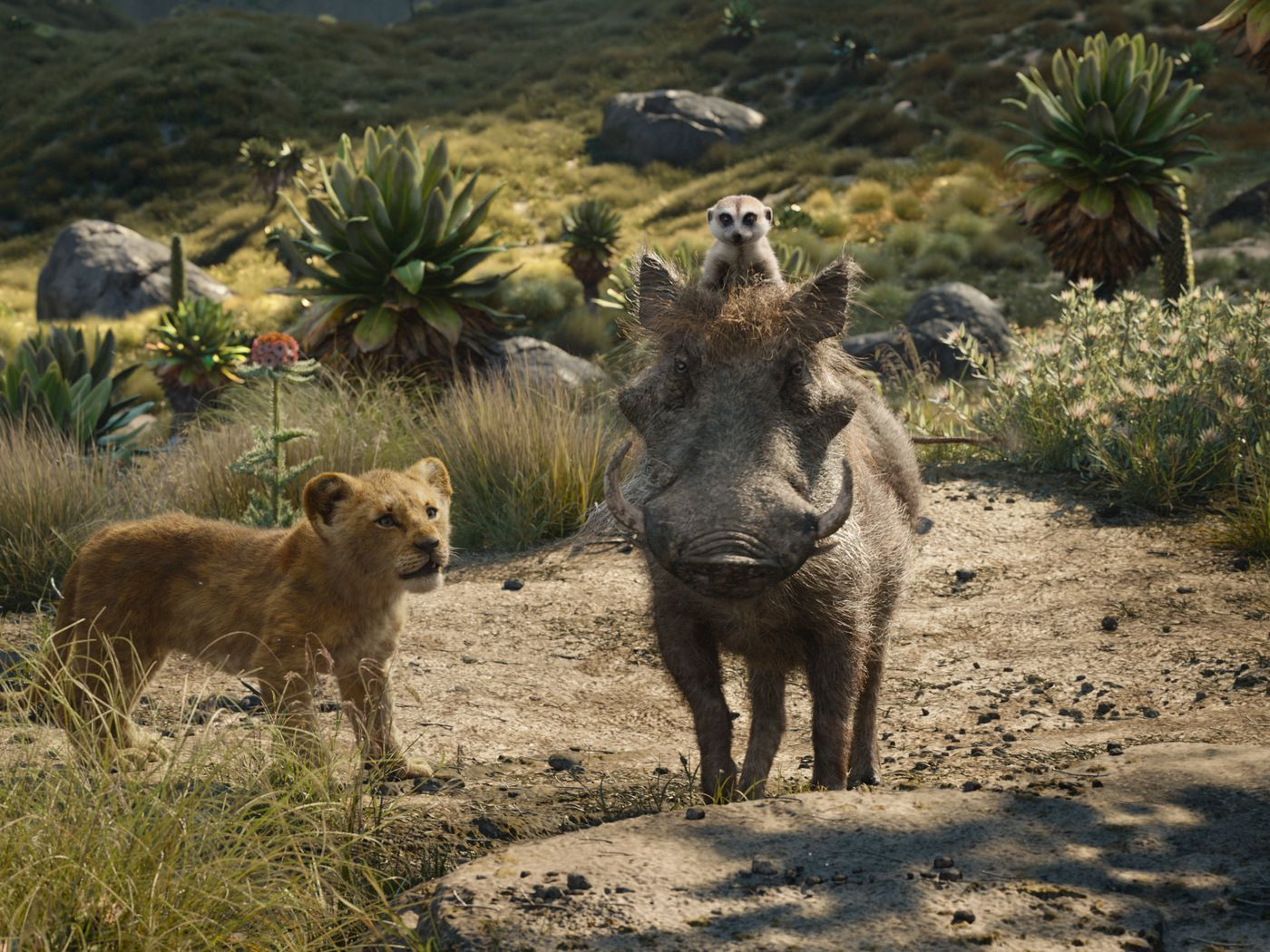 The Lion King Remake Is The Biggest Animated Earner Ever But Disney Claims It Isn T The Verge