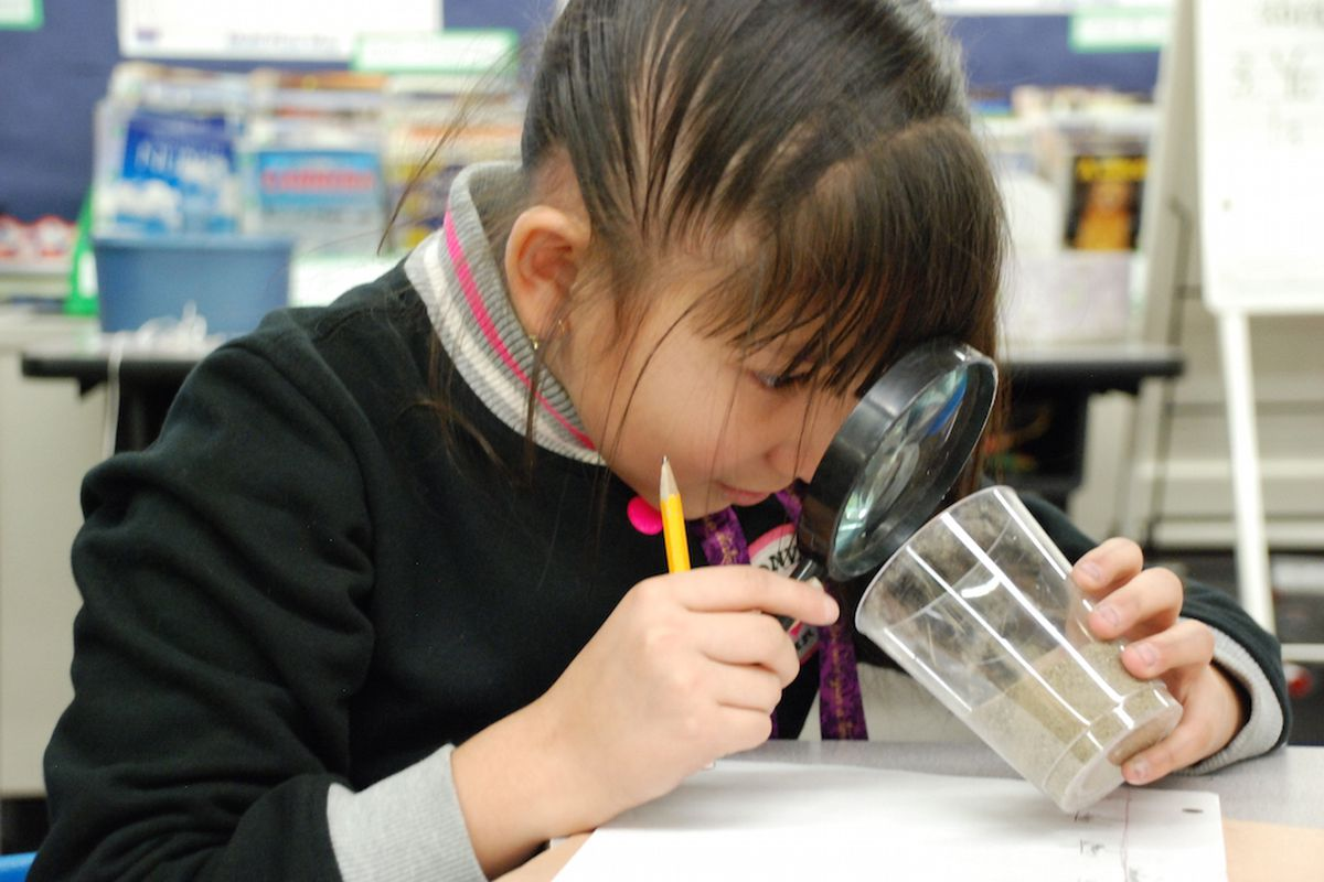 A Lumberg Elementary School student exams sand as part of an experiment.