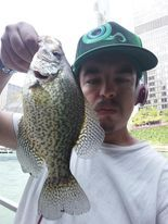 Jeffrey Williams with a Chicago River crappie. Provided