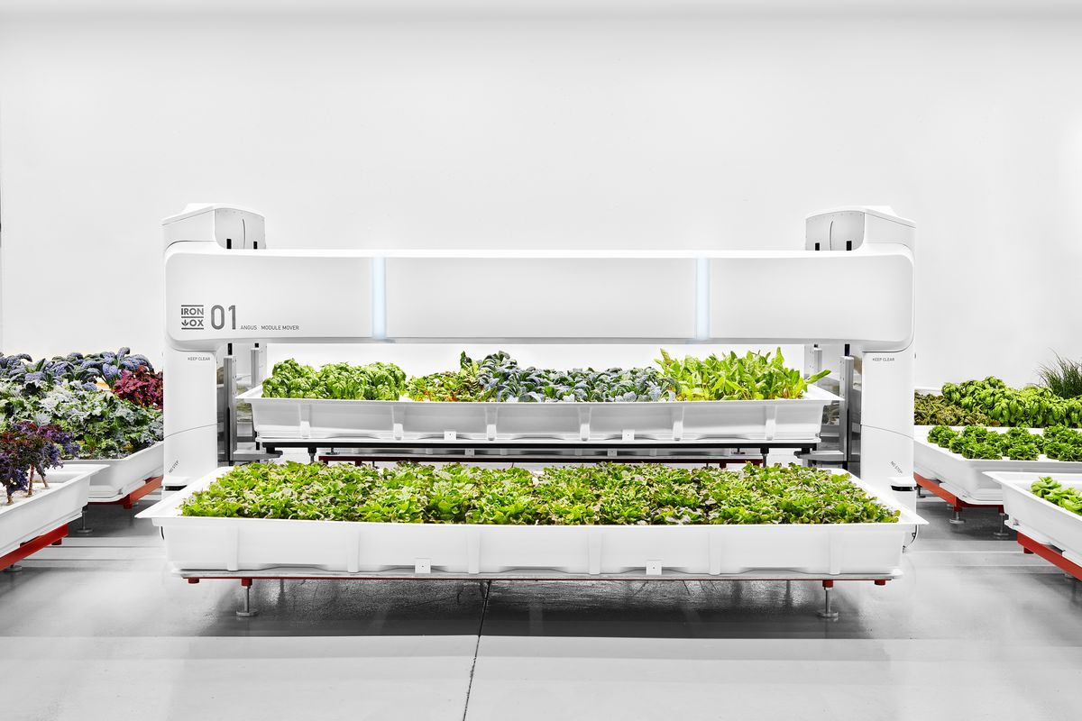 81800c280 Meet Angus, Iron Ox's robot porter, which is designed to move pallets of  plants around their indoor farm. Photo: Iron Ox