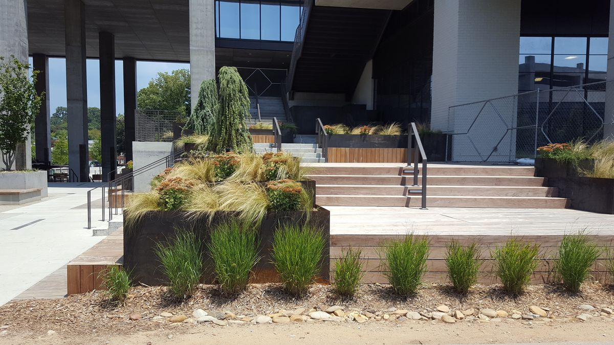 New plants line the Beltline in front of 725 Ponce's concrete and metal pedestrian plaza.