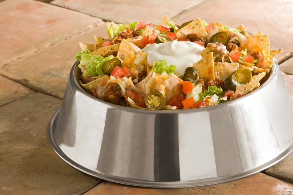 Double Dogs Bowl