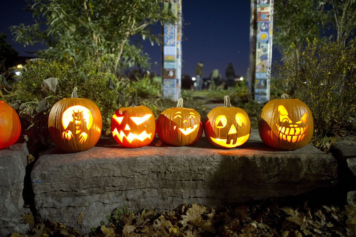 These jack o lanterns are scary, but not as scary as poisoned candy.