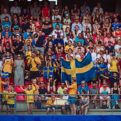 Swedish fans during Sweden's victory against Germany.