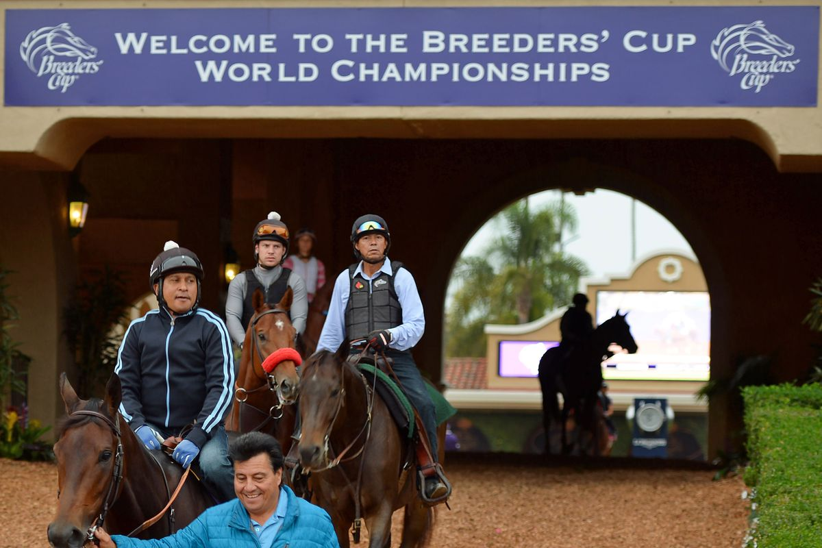 Breeders Cup 2017 Live Stream How To Watch Friday S