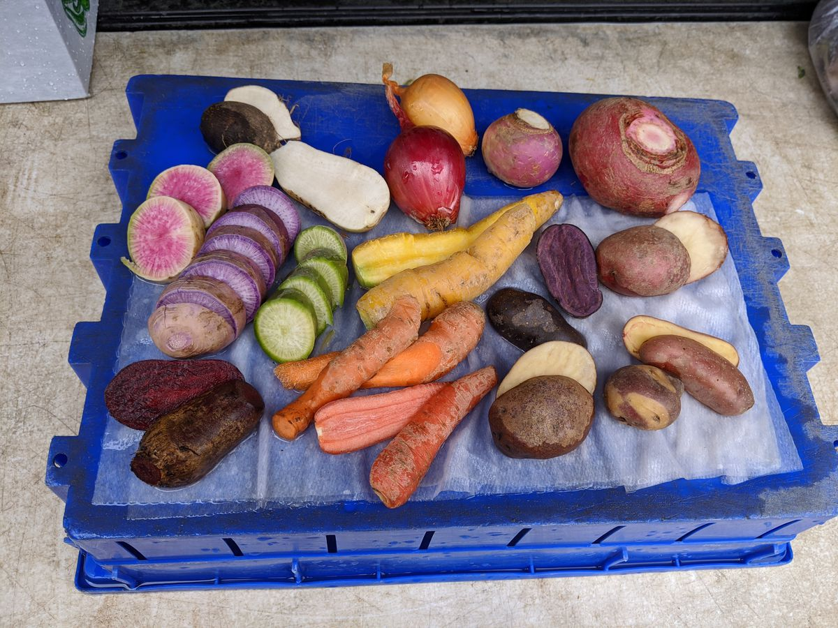 A blue tray of carrots, radishes, and other root vegetables, some cut open.