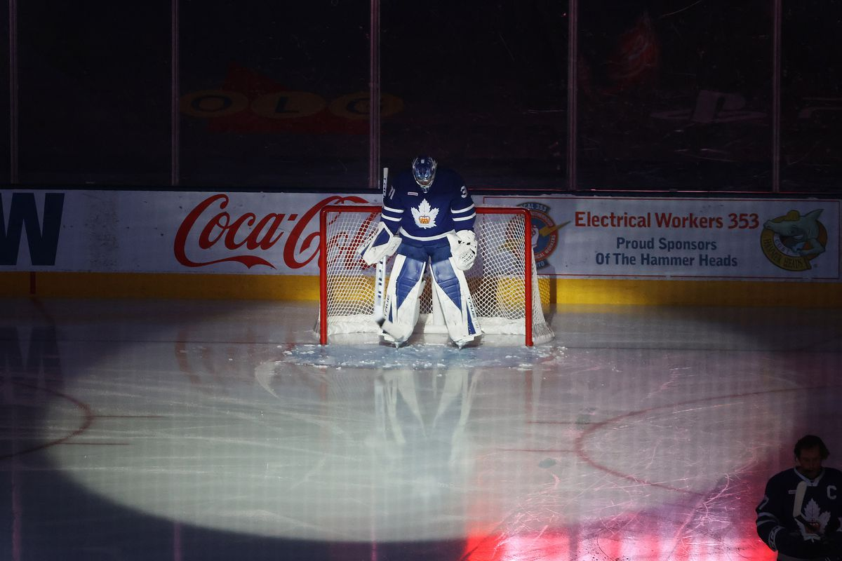 the Toronto Marlies play the Manitoba Moose in American Hockey League action
