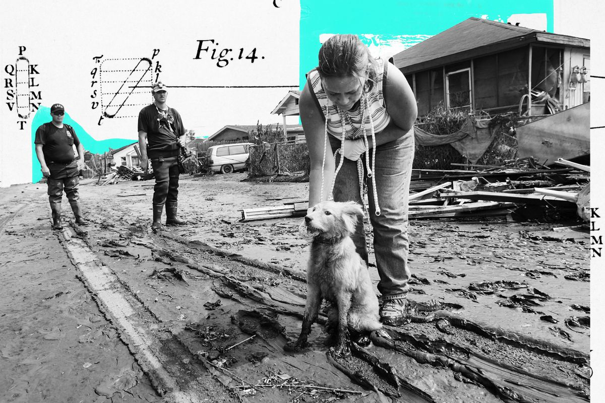 Photo illustration of a rescue worker in a disaster zone finding a dog.