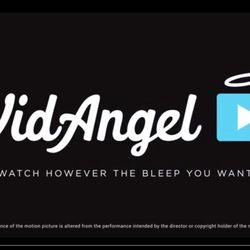 A picture of VidAngel's website.