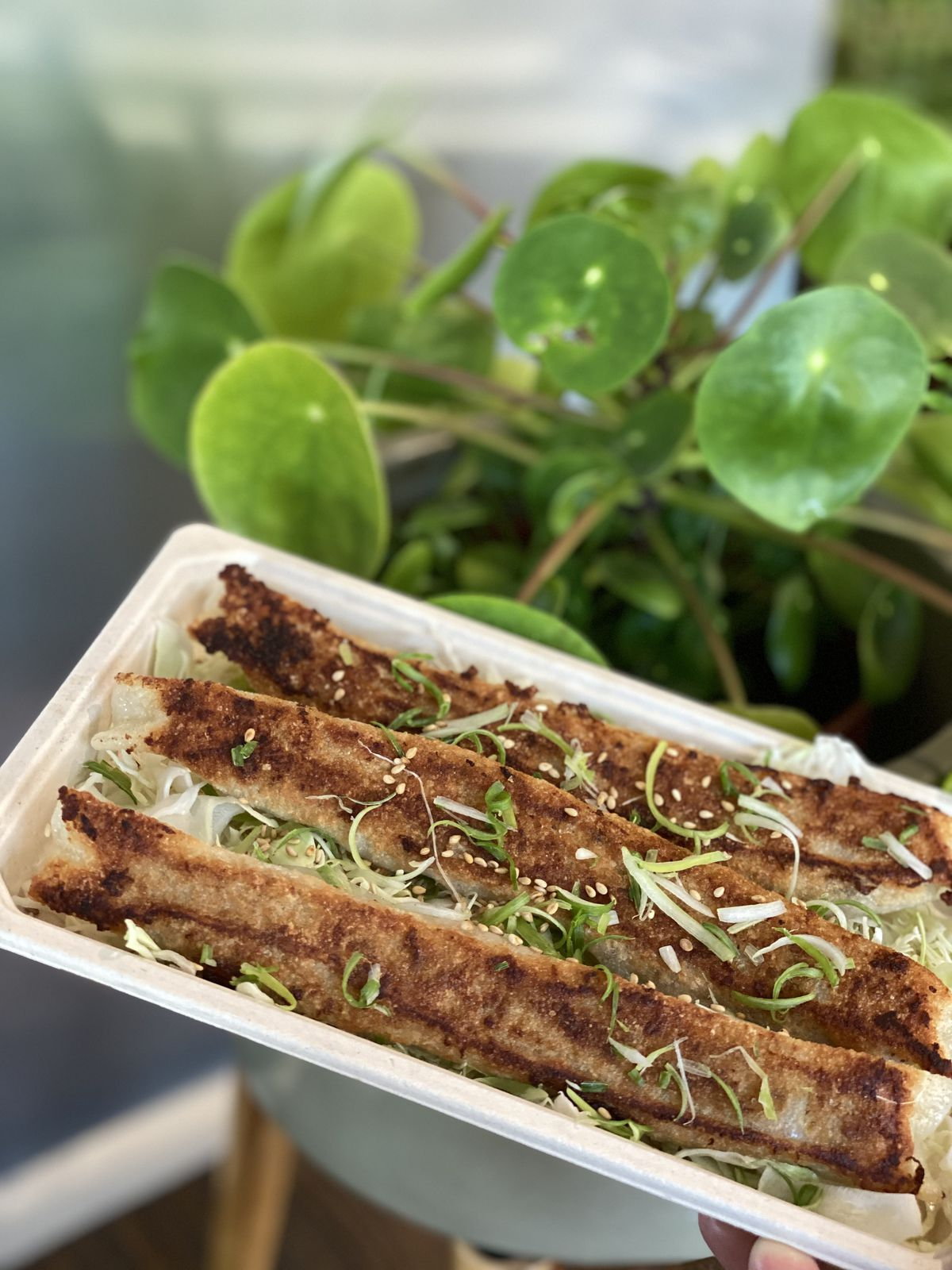 Long potstickers with brown crispy edges, garnished with scallion and sesame seeds