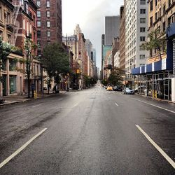 """An empty Madison Avenue this morning from 69th Street looking south via <a href=""""https://twitter.com/BehindTheBrand/status/263284063719288833"""">@BehindTheBrand</a>/Twitter"""