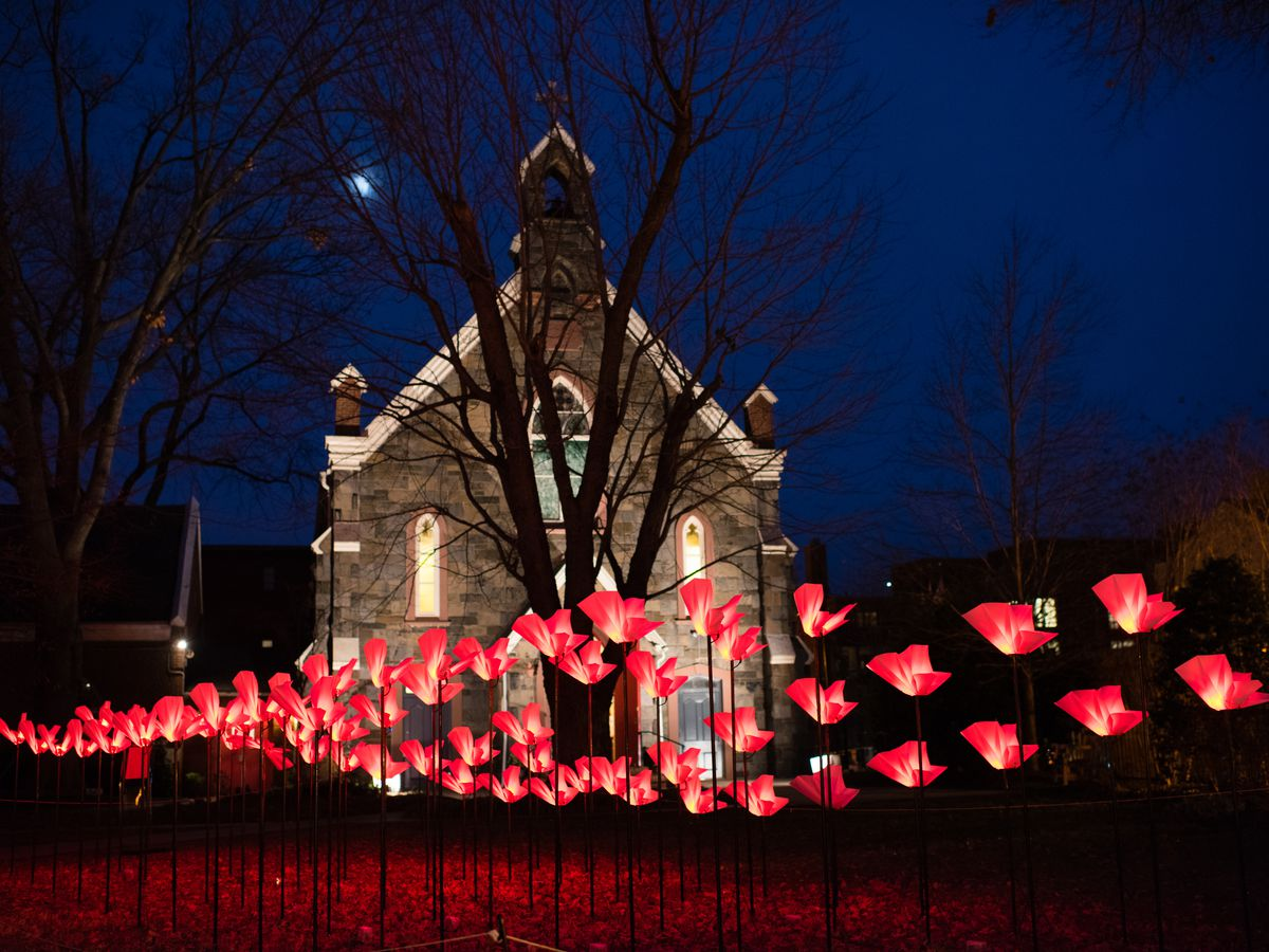 Lit-up flower displays outside a church.