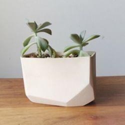 """Planter by <a href=""""http://beanandbaileyceramics.com"""">Bean and Bailey Ceramics</a>"""