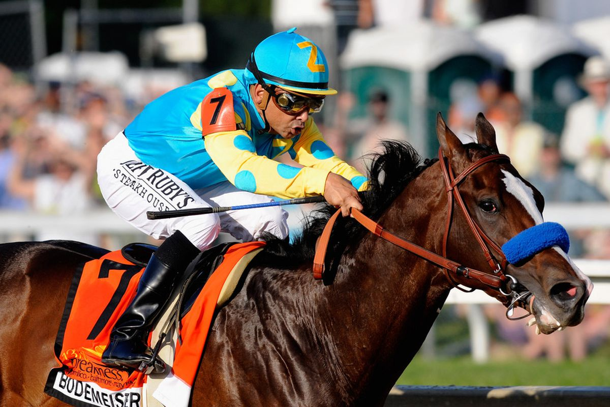 Bodemeister, in a familiar position, leads his class of new stallions in 2013