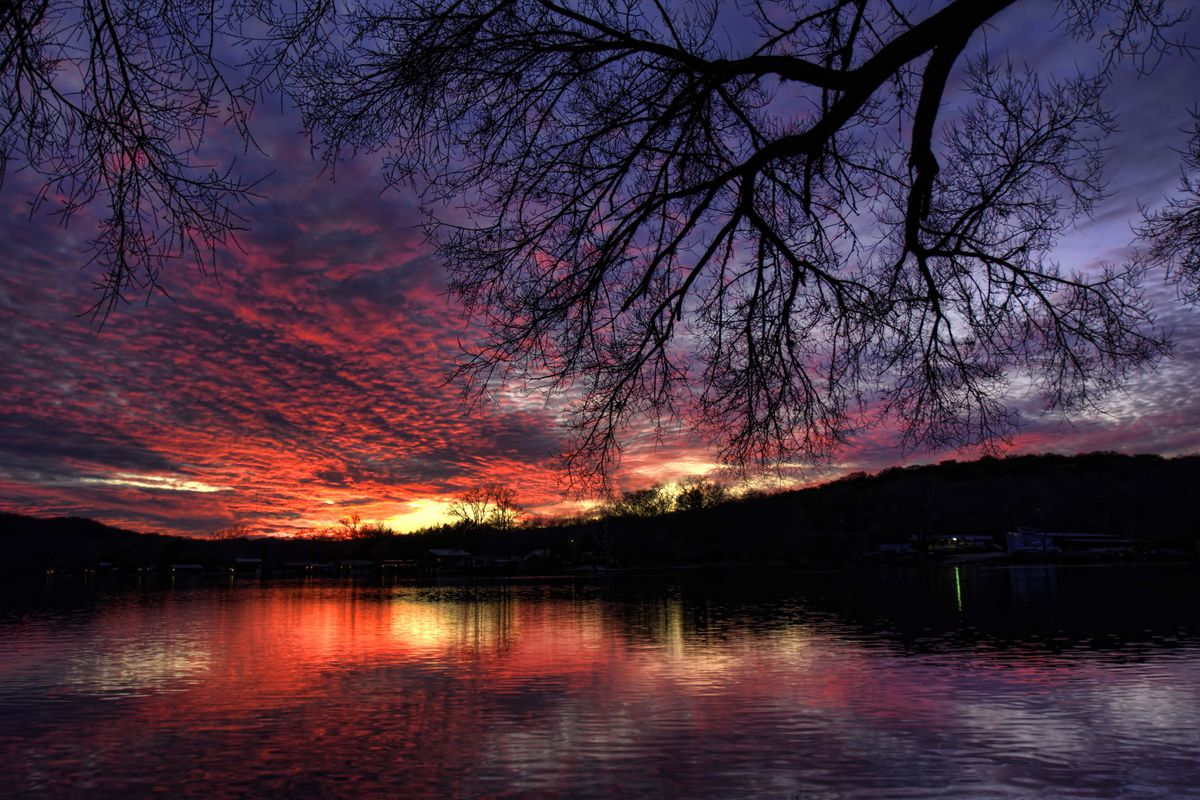 Orangey-purple sunset over lake with tree branch above