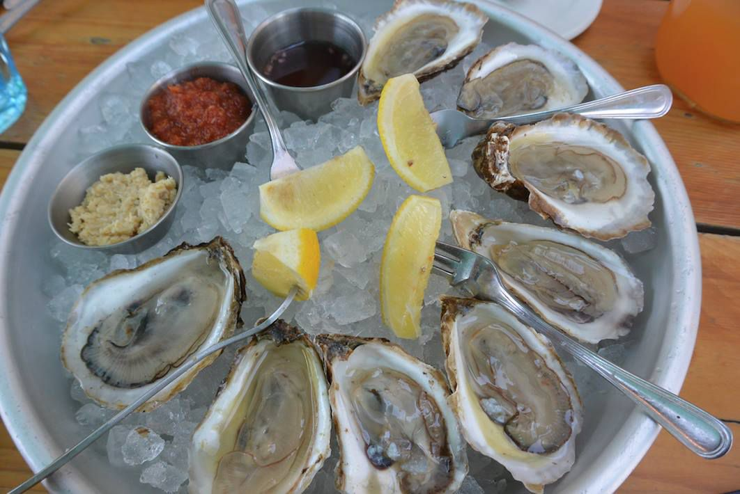 Oysters from Mongers