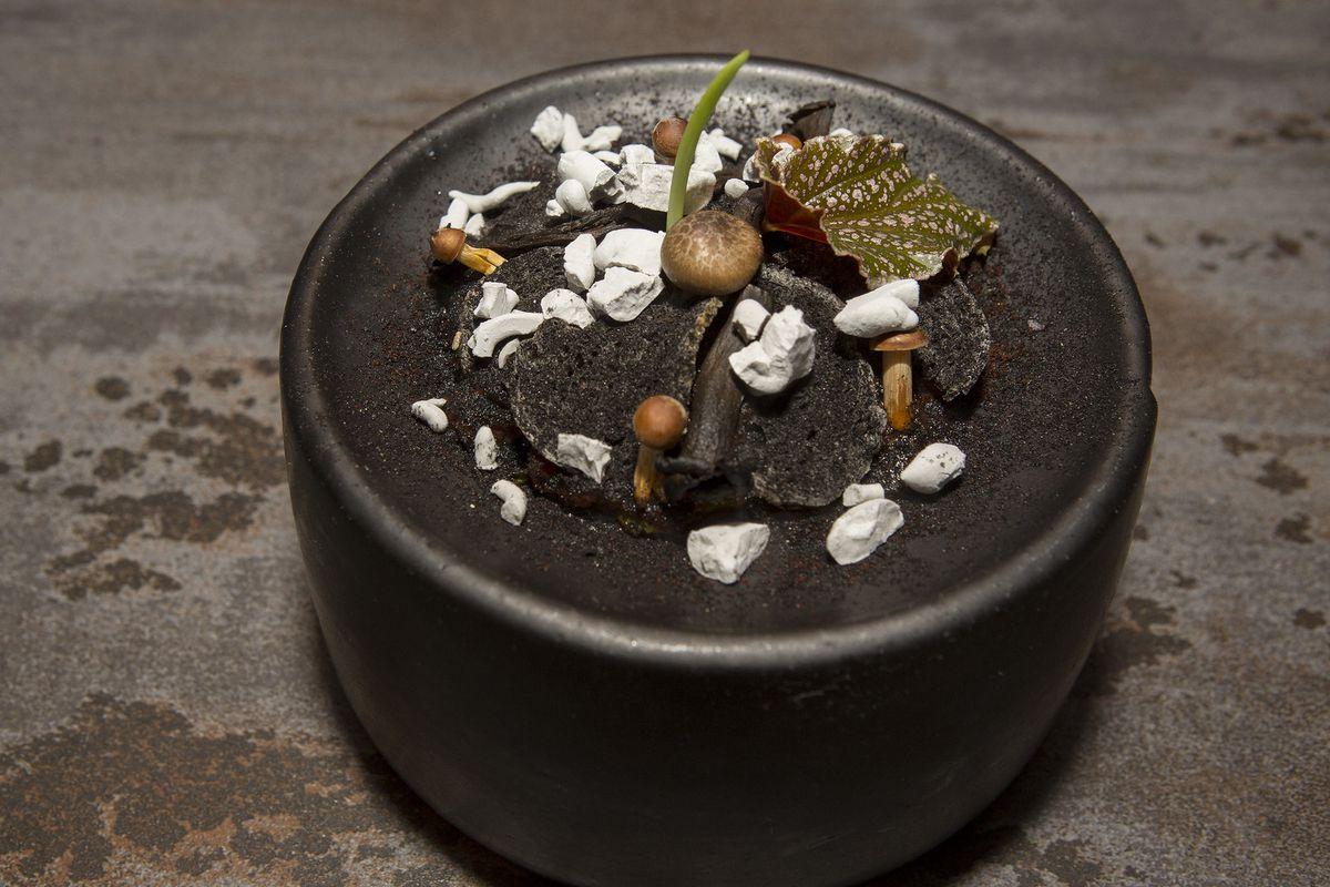 A tasting menu Mexican dish full of terra.