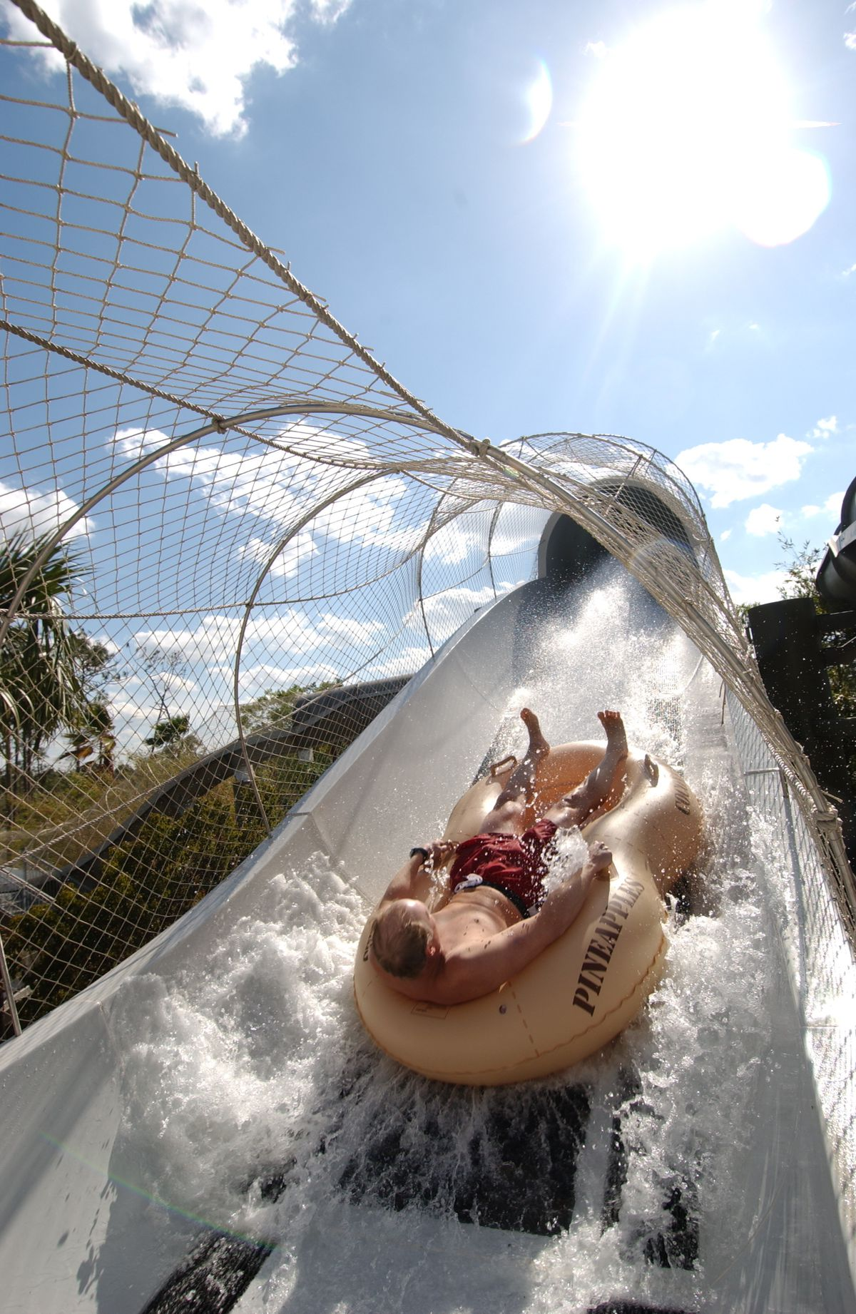 Walt Disney World guests are propelled to speeds reaching 30 feet per second on Crush 'n' Gusher, a new water coaster thrill ride at Disney's Typhoon Lagoon in Lake Buena Vista, Fla. (Disney/Diana Zalucky, Photographer)