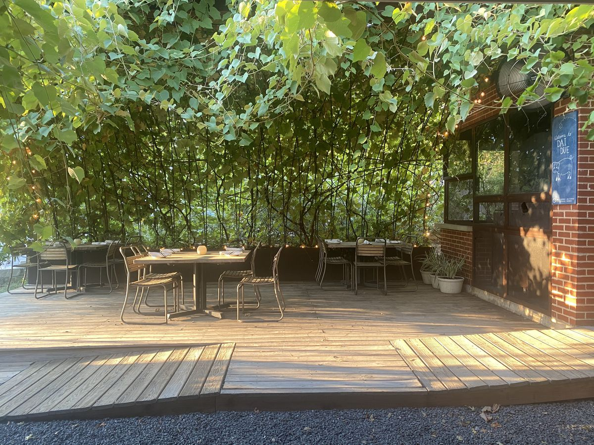 Wooden patio shaded by lots of trees with brick building to the right
