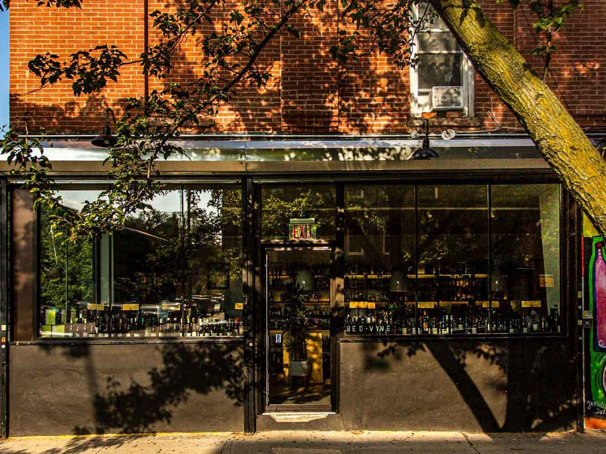 A corner cafe gleams in the sunlight, partially shaded by a tree growing out of the sidewalk