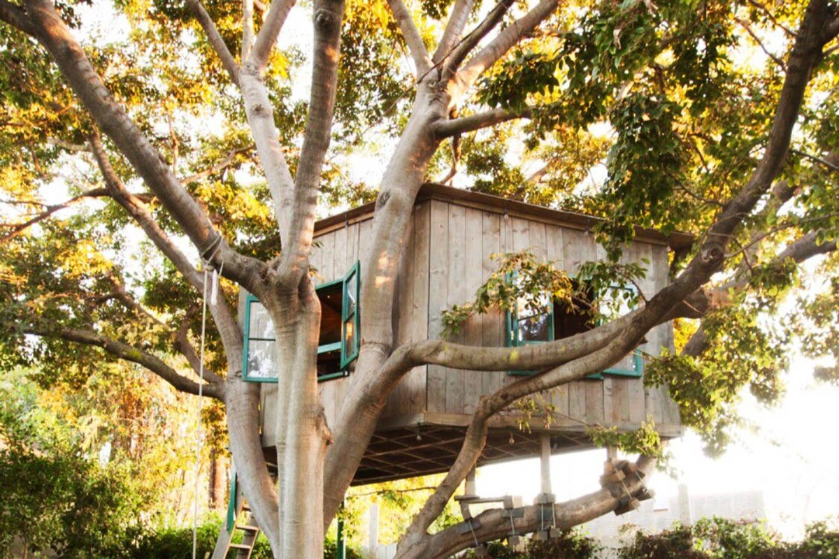 Vacation rentals: 12 captivating treehouses for rent - Curbed
