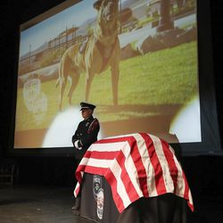 A police officer stands guard during memorial services for Herriman police K-9 Hondo at Herriman High School in Herriman on Saturday, Feb. 29, 2020. The 7-year-old Belgian Malinois was shot and killed in the line of duty on Feb. 13 while trying to apprehend a wanted violent fugitive who was also shot and killed after officers say he displayed a gun.